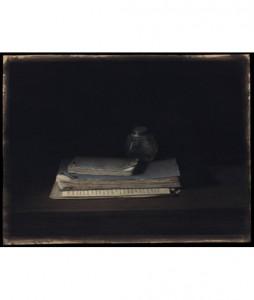Waterman-48x36cm